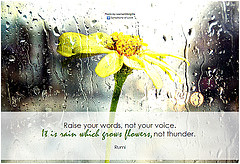 Rumi poster with quote