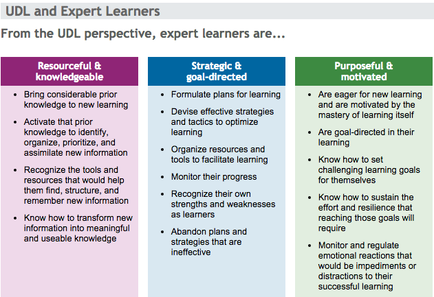 Evidence for expert teaching five flames 4 learning - Universal design for learning lesson plans ...
